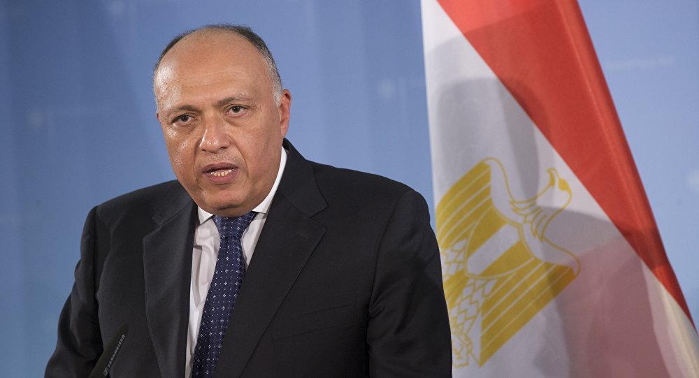 وزير الخارجية المصري يلتقي السكرتير العام للمنظمة الدولية للفرانكفونية