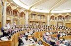 وفد مجلس الشورى يبدأ غدا زيارة لمنطقة عسير