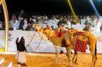 نادي الإبل يُنظم مزاد النخبة غداً الثلاثاء في الرياض
