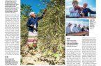 صحيفة (ArabNews) :البن الخولاني القصة التي لم تروى عن النفط الآخر في الجزيرة العربية