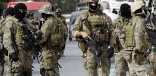 الجيش الجزائري يدمر مخابئ للإرهابيين ويوقف مهربين