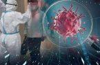 وزارة الصحة الفلسطينية تسجيل اصابات جديدة بكوفيد ١٩