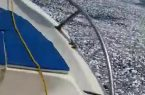 شباك الشنشولا.. تتسبب في نفوق أسماك كثيرة بشواطئ القنفذة