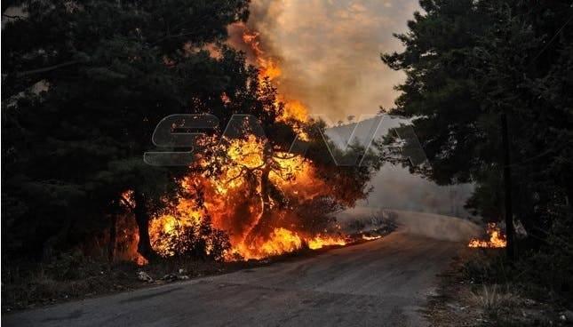 حرائق هائلة تضرب مناطق سورية والنظام يتّهم الفلاّحين