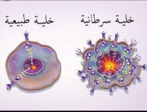 """""""العيد"""" لبوست: التمر عنصر فعال في الوقاية من السرطان"""