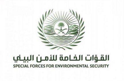 القوات الخاصة للأمن البيئي تضبط مخالفين لنظام البيئة لبيعهم حطبًا محليًا لأغراض تجارية